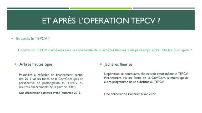 TEPCV - Prospective 2019-4